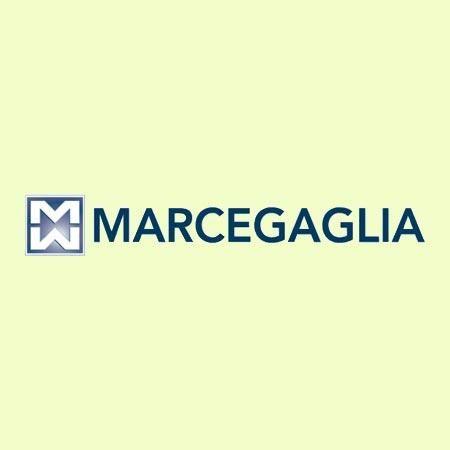 Marcegaglia group